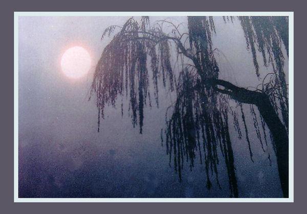 Tiếng ru mùa thu (thơ ĐL dp) Trangtt31
