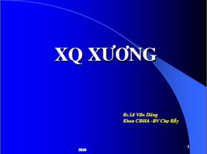 19022013-XquangXuong