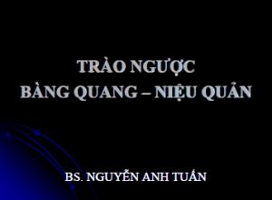 07032013_TraoNguocBQNQ_BsAnhTuan