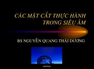 22032013-CacMatCatTHtrongSieuAm-BsDuong