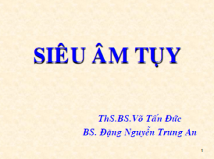 01042013-SieuAmTuy-BsAn
