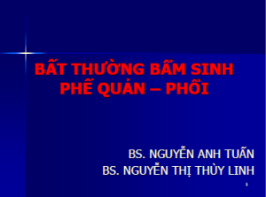 13052013_BatThuongBamSinhPheQuan_Phoi_BsLinh