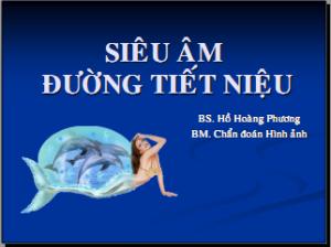 21052013_NhiemTrungHeNieu_BsPhuong