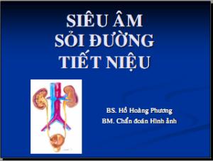 21052013_SoiNieu_BsPhuong_Bia