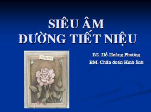 23052013_ChanThuongTietNieu_BsPhuong