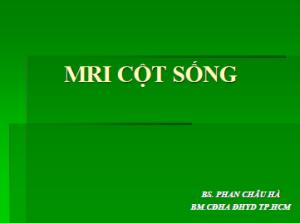 02082013_MRI_CotSong_BsHa